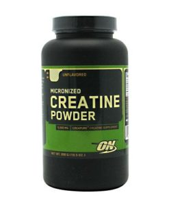 Bulk_Optimum_Nutrition_Micronized_Creatine_Powder_Unflavored_300_gram_748927023848